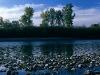W Dolinie Dunajca